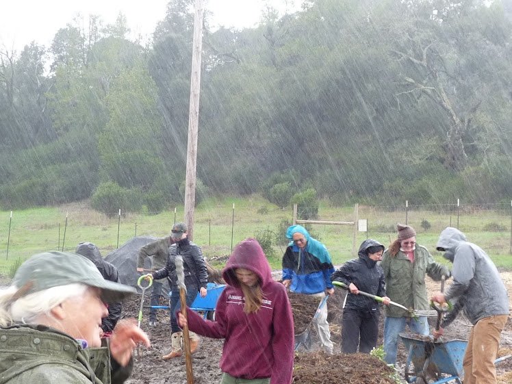 Building compost piles in the hail and rain