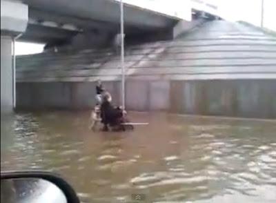 cachorro ajuda cadeirante em enchente na russia