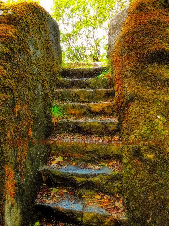 Secret garden - Bergen Hordaland Norway