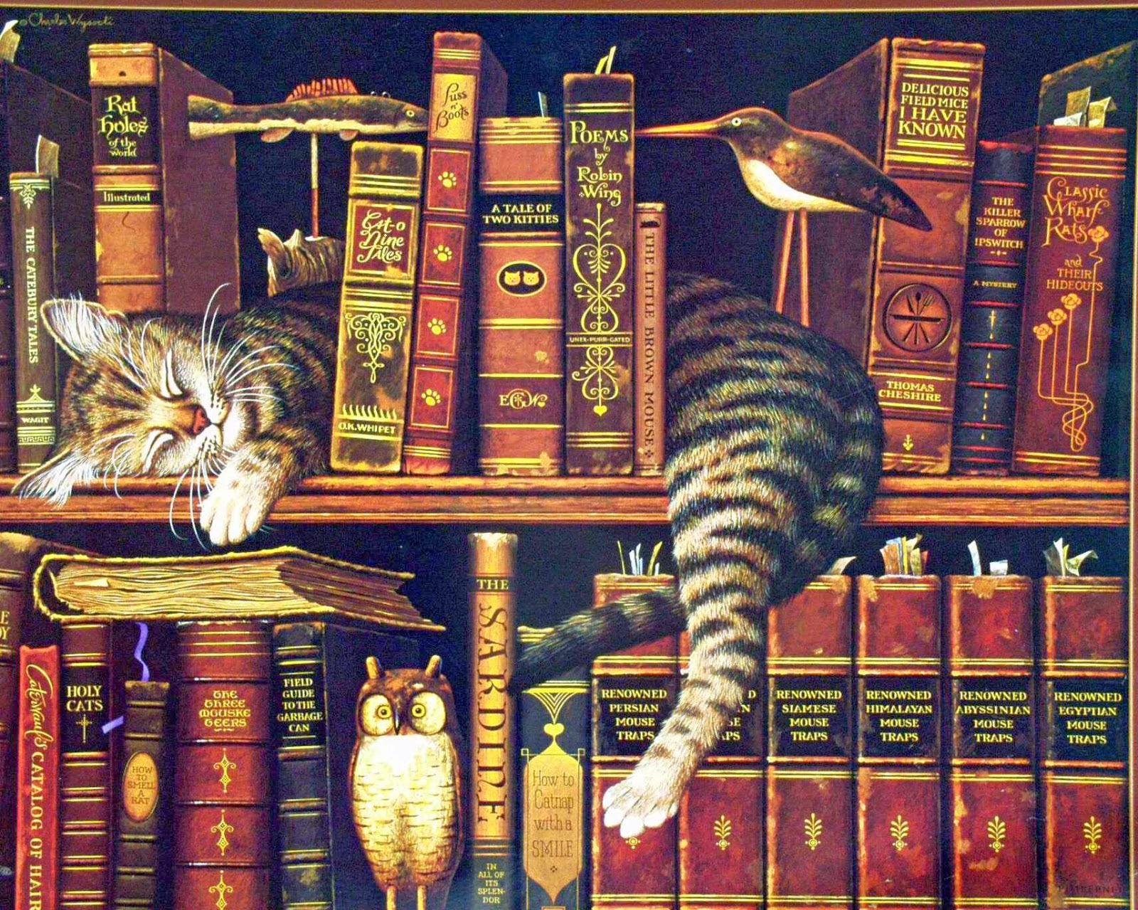 Kitaplık Kedisi:)