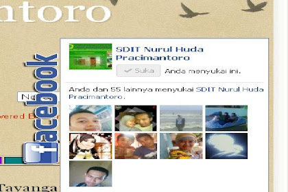 Cara Membuat Fan Page Facebook Auto Hide