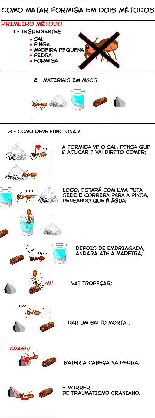 Como matar uma formiga