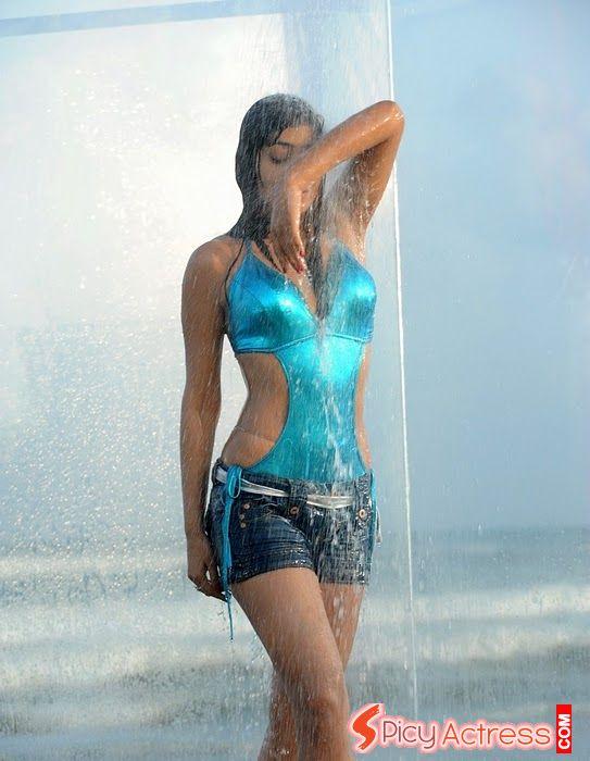 bollywood, tollywood, hot, Shriya, saran, wet, and, hot, photo
