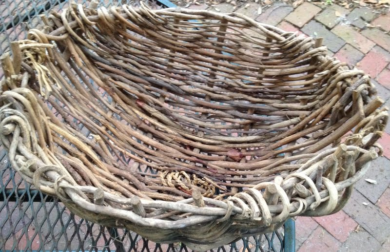 Basket Weaving Uses : Weaving natural materials on a tomato cage floridacreate