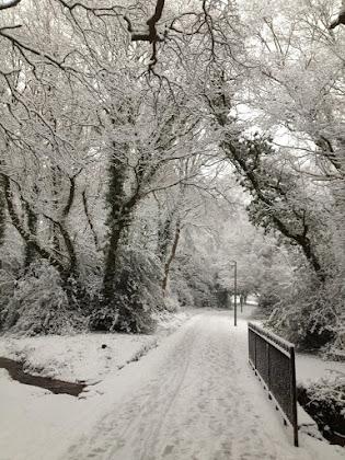 Southampton Common in snow