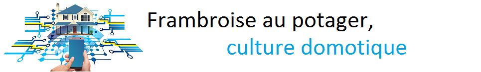 La framboise au potager : le BLOG de la culture domotique !