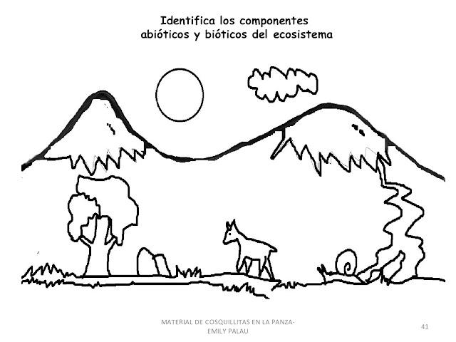 Carpetas escolares: Ecosistemas en dibujos