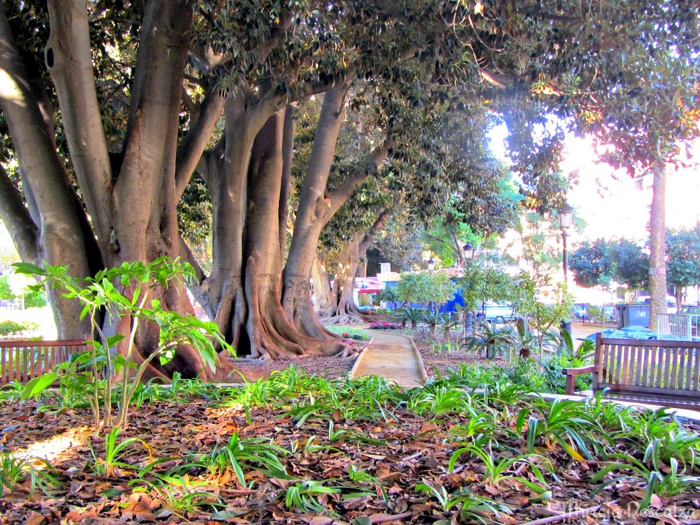 Jardín de Floridablanca, en Murcia, uno de los puntos con el sistema TriComm