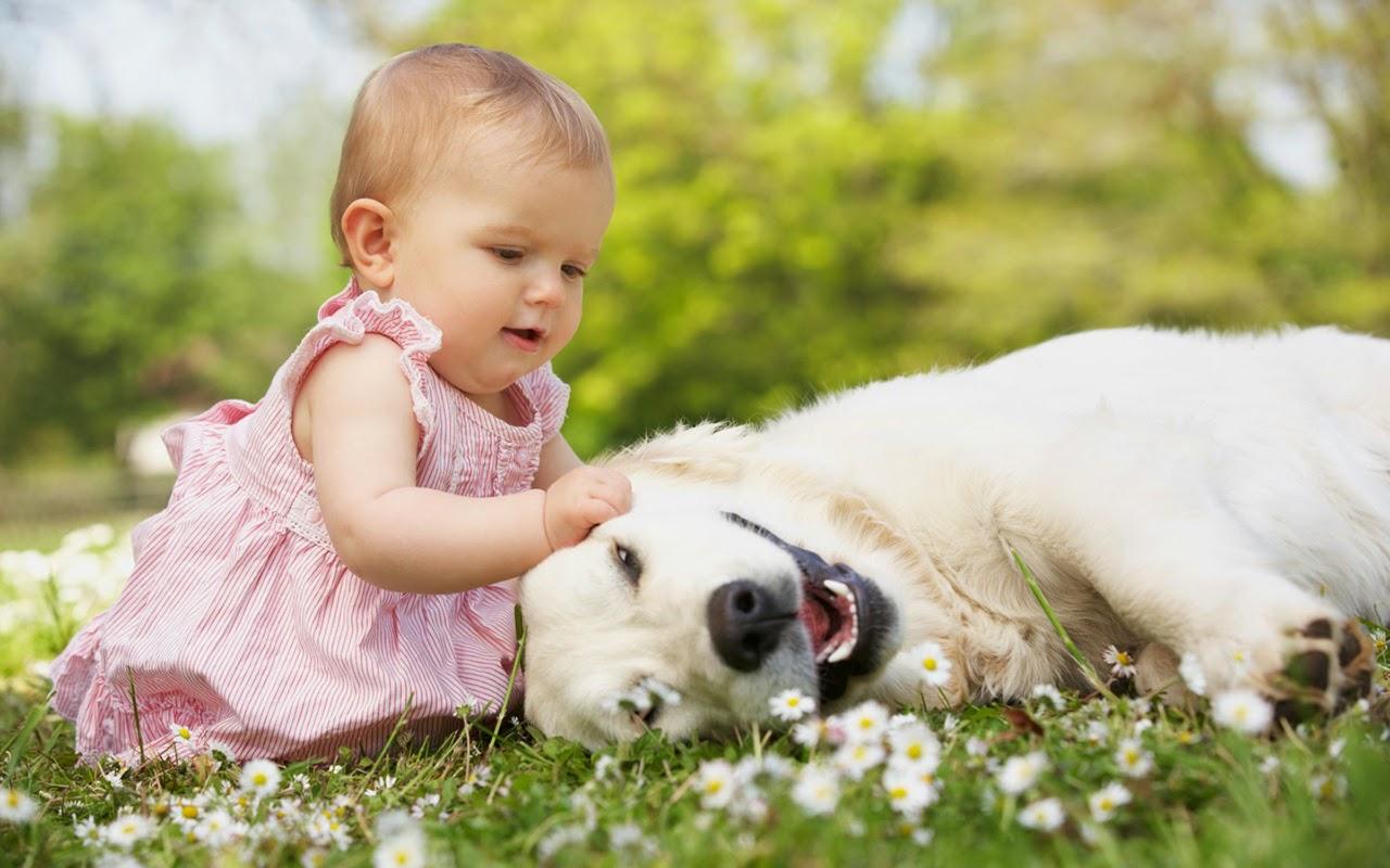 Las mascotas son muy buenos para la salud-Pets are very good for health- ペットは健康のために非常に優れている