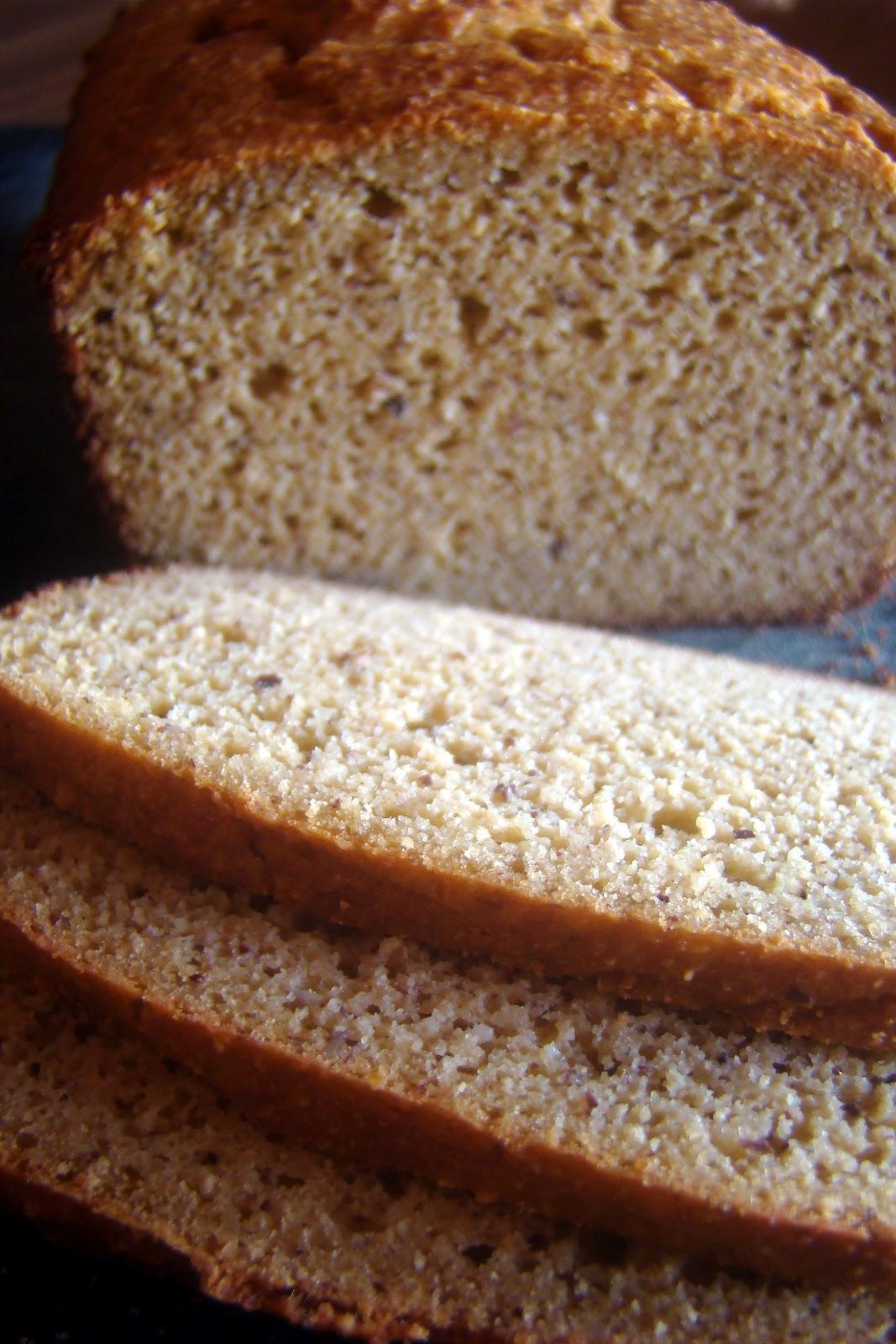 Nourished and Nurtured: Grain-free Sandwich Bread (GAPS ...