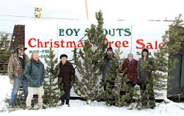 please do not buy boy scout christmas trees this year - Boy Scout Christmas Trees