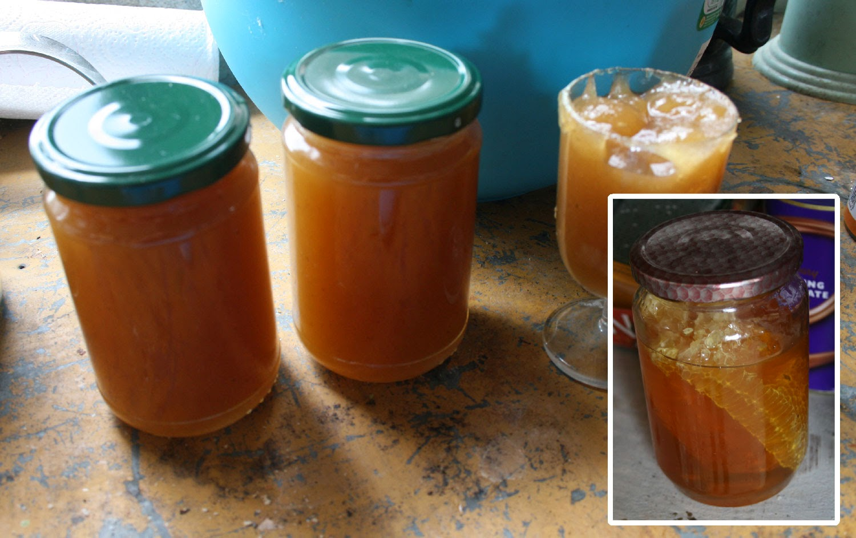 Jam making, and the bonus ingredient