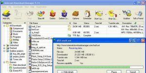 Internet Download Manager 6.11