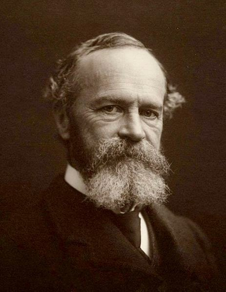 william james on free will essay William james was a fellow-member of the for james, free will is both it is small wonder that james published his later work in essays in.