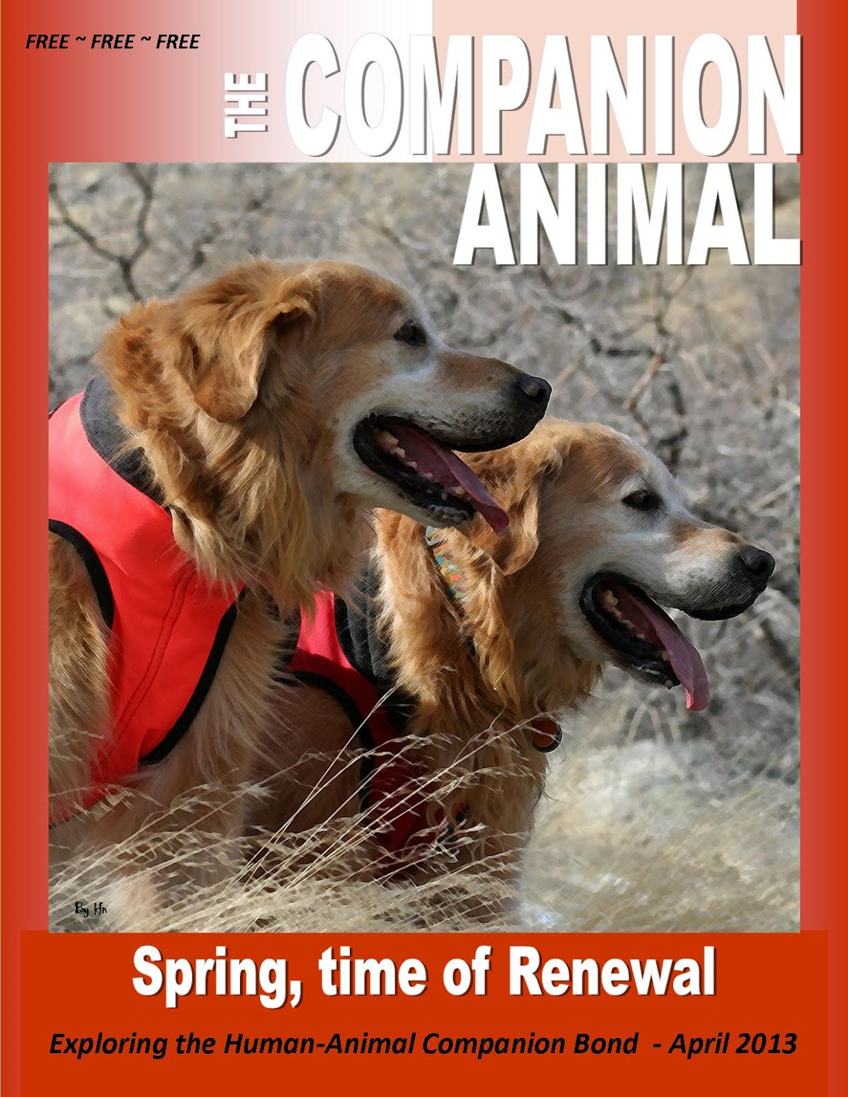 The Companion Animal Magazine