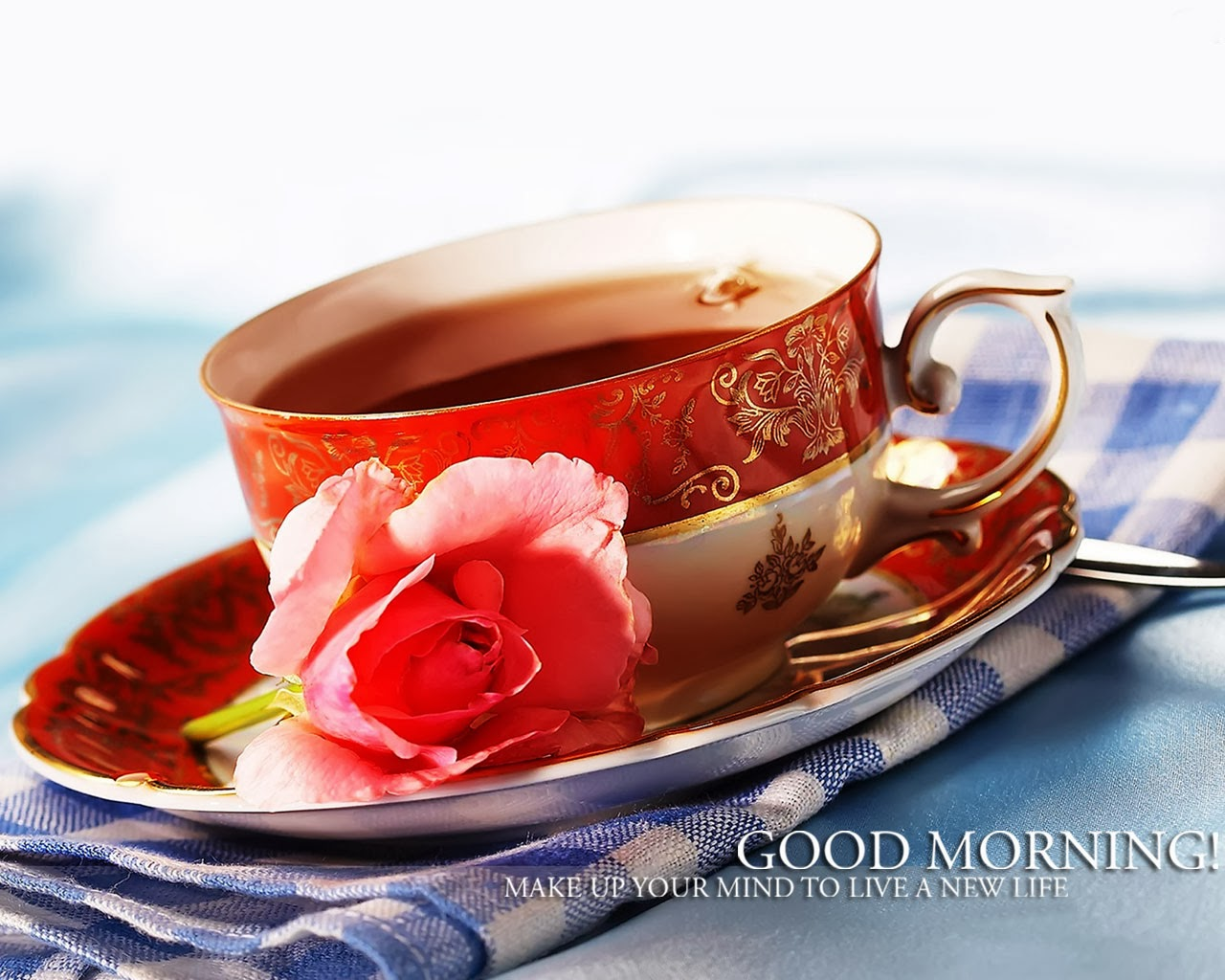 good-morning-with-red-pink-rose