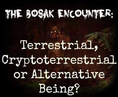 The Bosak Encounter: Terrestrial, Cryptoterrestrial or Alternative Being?  Bosak4
