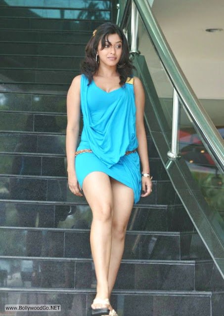 Payal ghosh coming down the stairs -  Payal Ghosh Bluedress hot pics