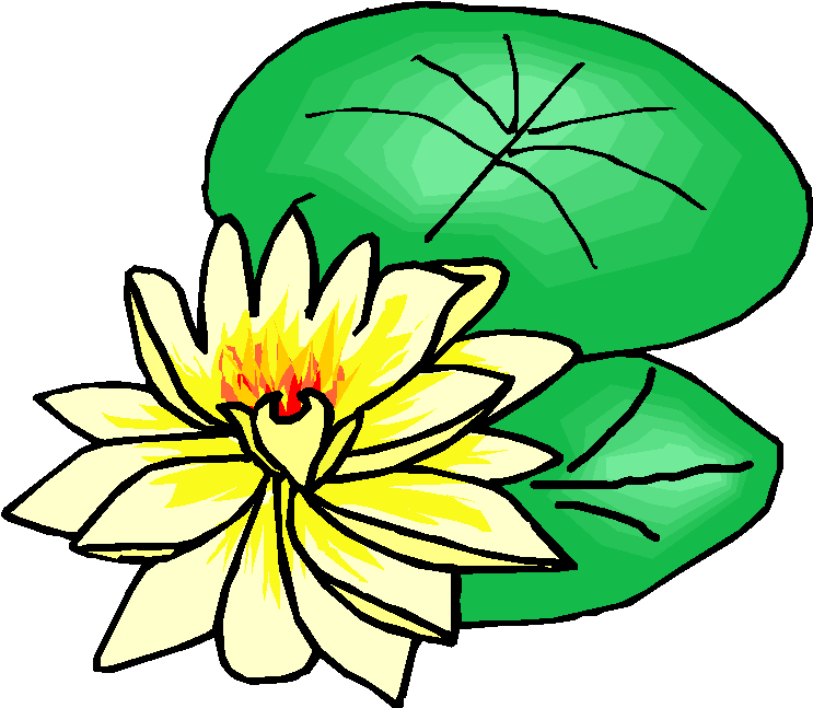 Lotus Flower Free Clipart