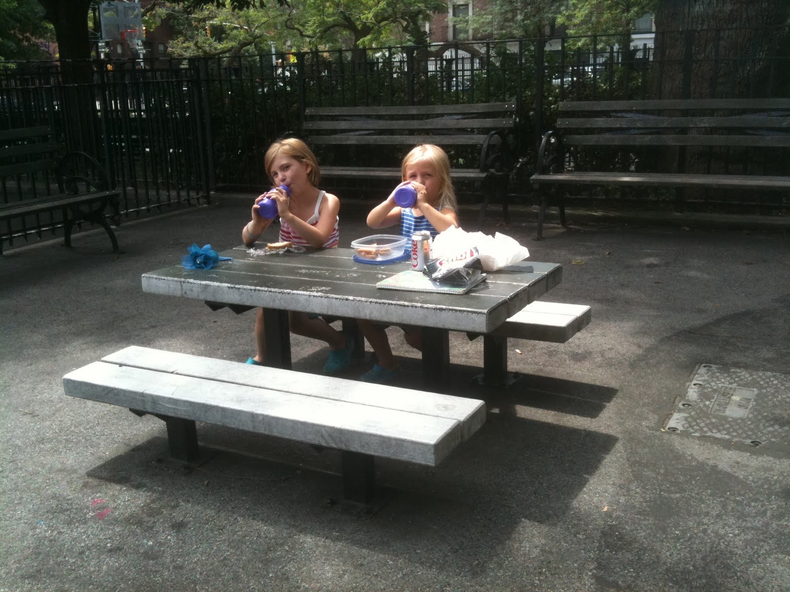 New York City Park Hopper Courtney Callender Playground - Playground picnic table