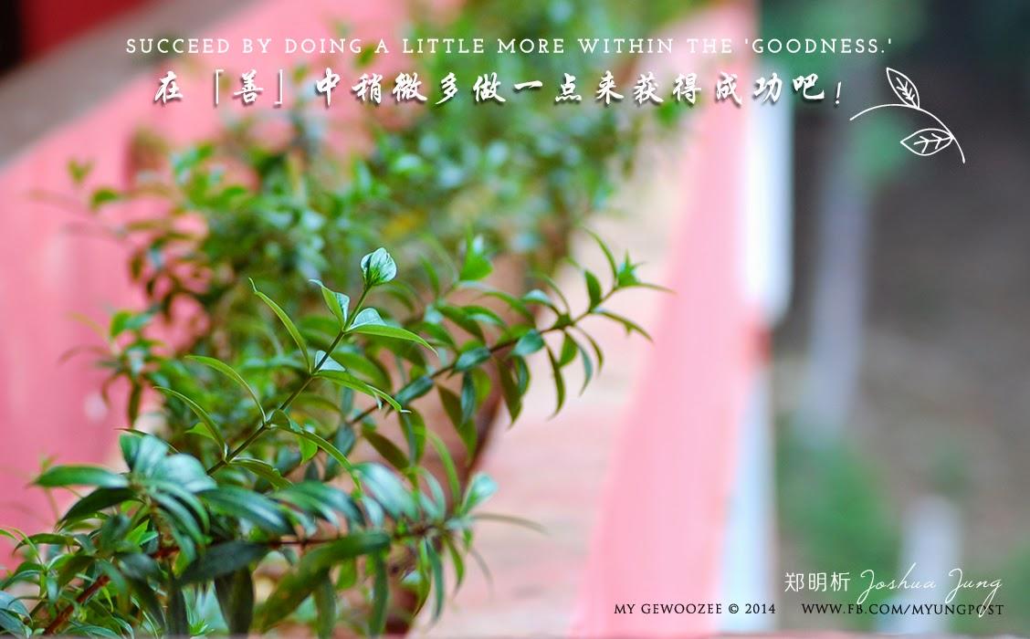 郑明析,摄理,月明洞,植物,成功,善,Joshua Jung, Providence, Wolmyeong Dong, Plant, Succeed, Goodness