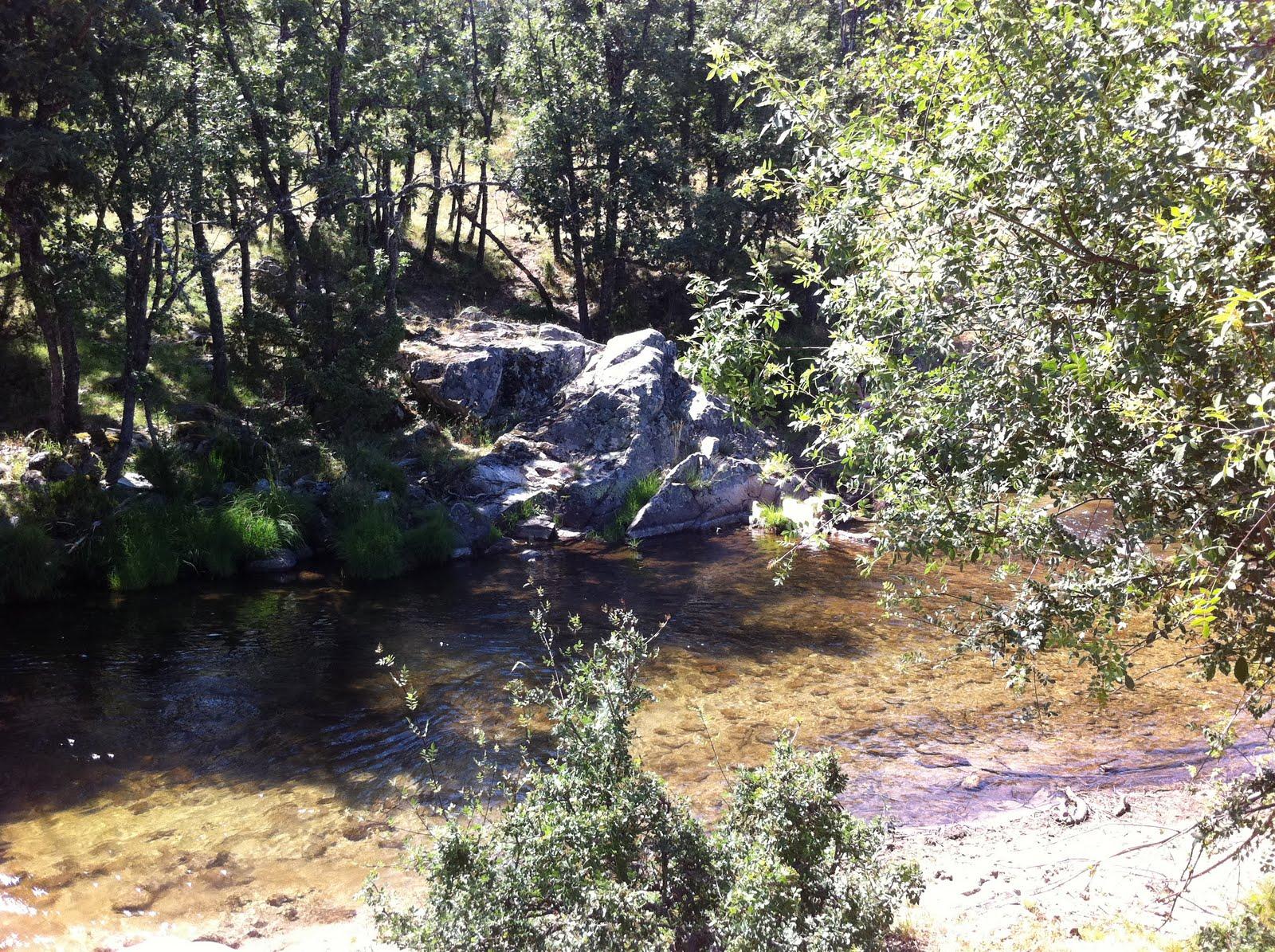 Losaunmasbajitos madrid piscinas naturales las presillas for Aguas termales naturales madrid