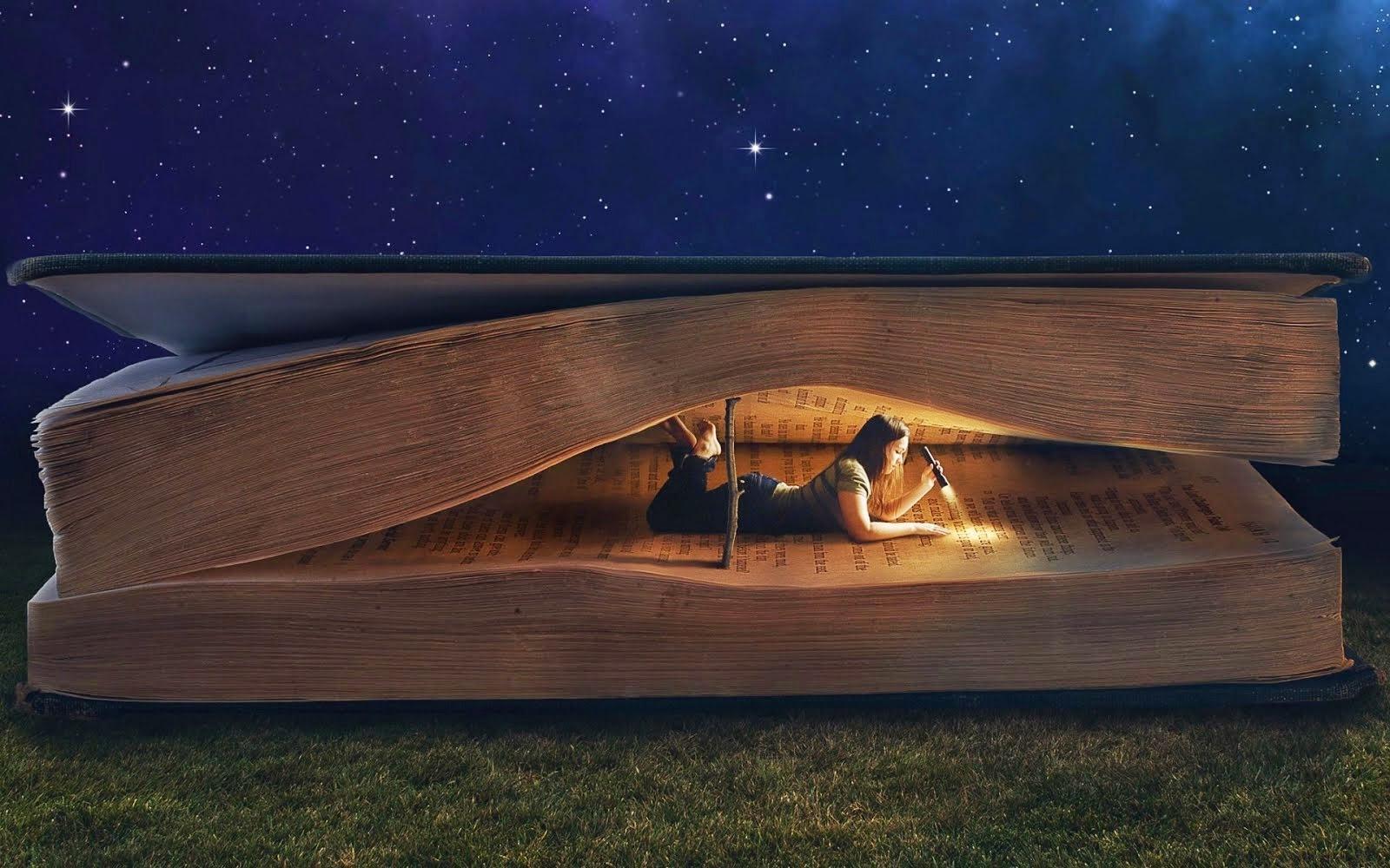 No hay mejor hogar que un libro