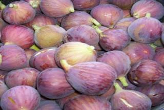 البرشوم ,فوائد التين البرشومي,فوائد التين المجفف,التين,فوائد تناول التين مع الزيتون,Dried Fig,التين والزيتون