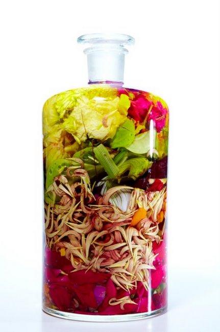 Land rich bottled flowers for Flowers in glass bottles