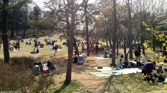 Coreanos acampados en el Gran Parque de los Niños de Seúl