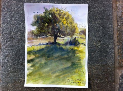 A watercolour sketch of a tree by David Meldrum