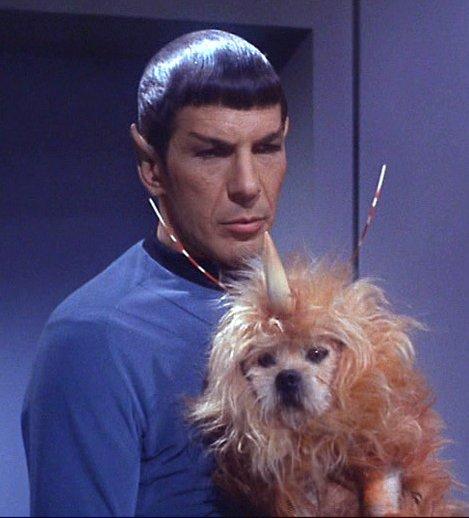 Spock Star Trek Alien with Dog