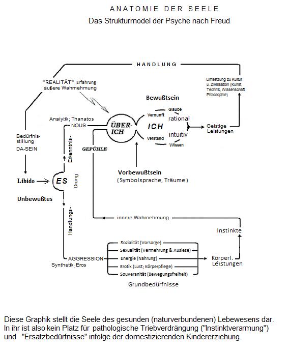 Das 3-Instanzen Model