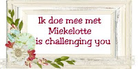 Miekelottes challenges