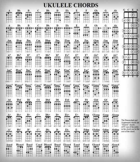 kunci gitar ukulele lengkap