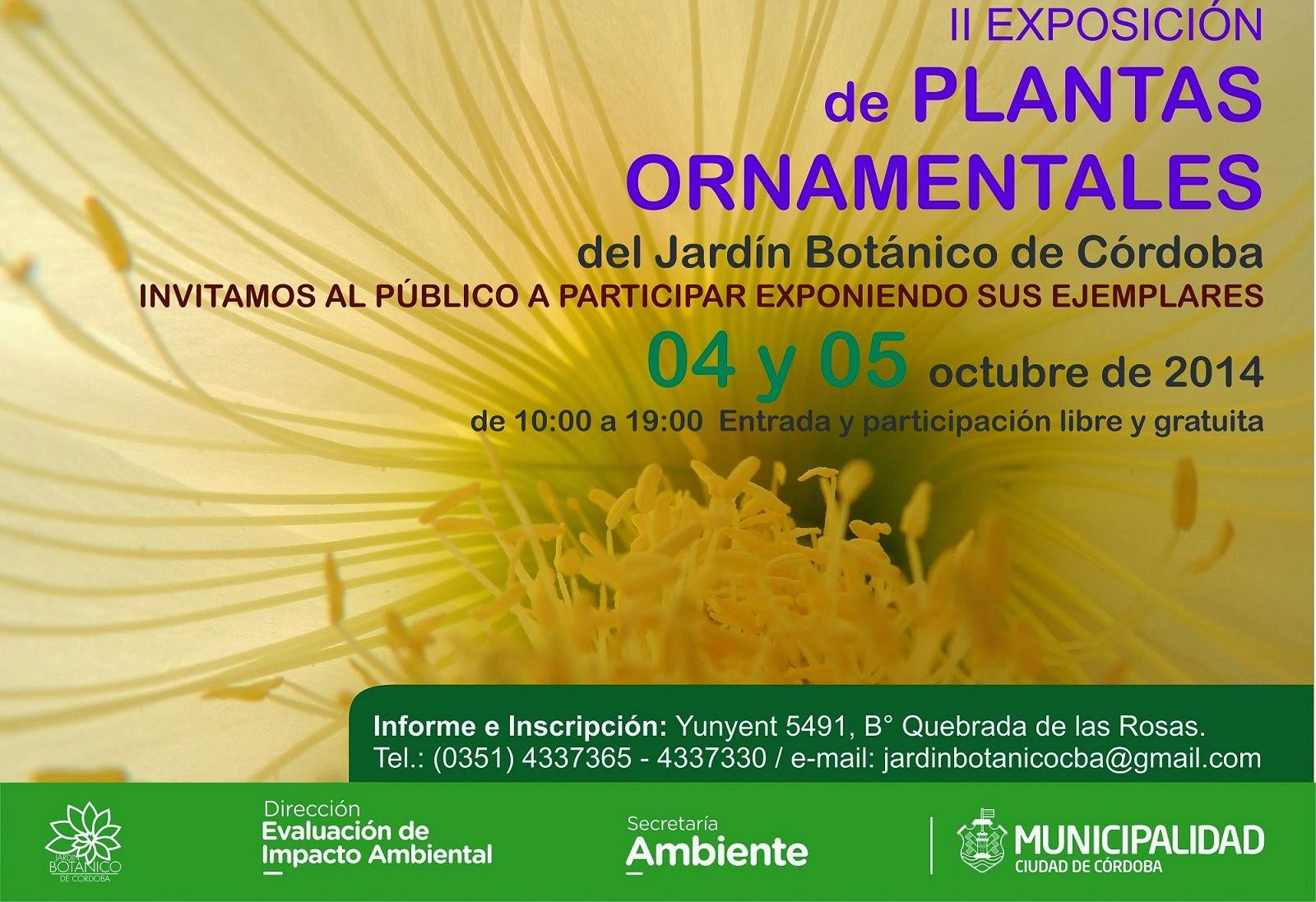 Jard n bot nico de c rdoba exposici n de plantas ornamentales for Informacion de plantas ornamentales