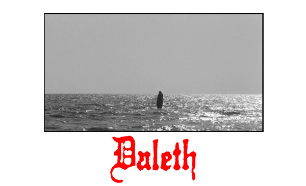 +++DALETH - ONE MAN INSTRUMENTAL DESTRUCTION+++