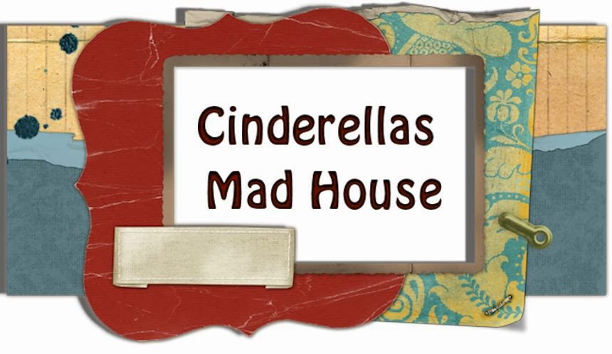 Cinderellas Mad House