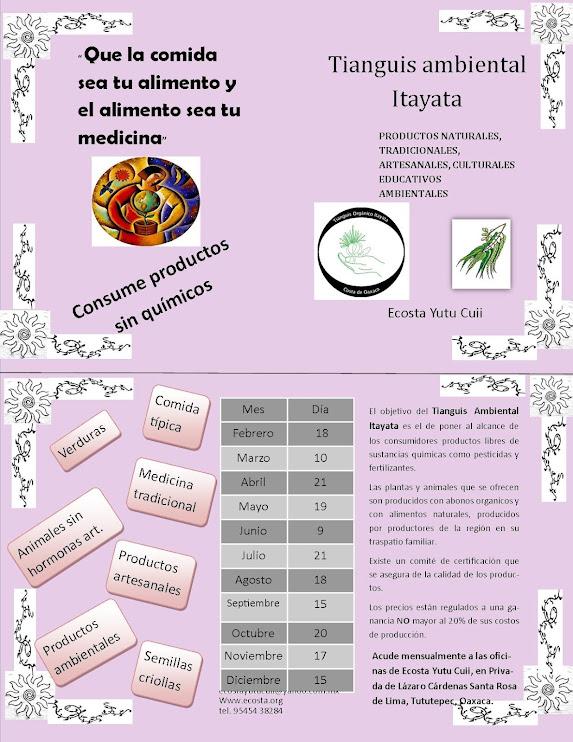 informacion del tianguis