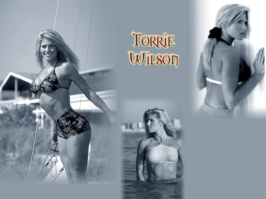 http://4.bp.blogspot.com/-fOiuzgobILQ/Ta9ceJEbSzI/AAAAAAAAAEc/7rXKOfoZeXI/s1600/Pics-of-Torrie-Wilson.jpg