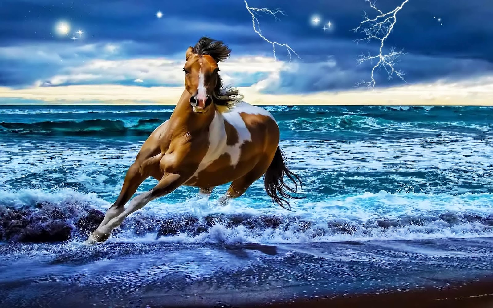 Water horse wallpaper - photo#12