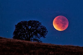 2014: Signs, Seasons and the Coming Tetrad - Lunar Eclipse