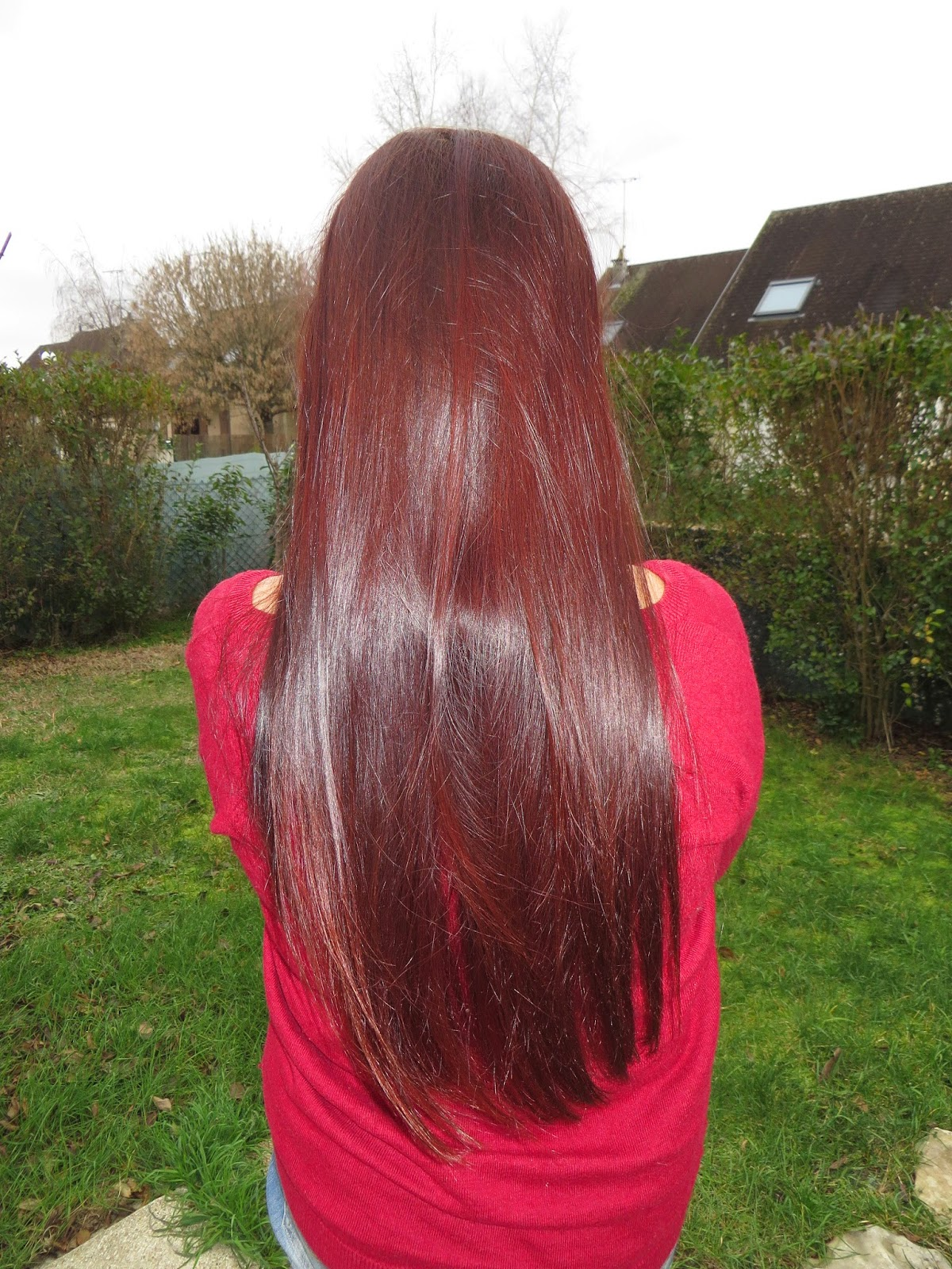 jai donc dcid de recommencer mes expriences capillaires en tentant de foncer mes cheveux naturellement bien entendu - Comment Foncer Ses Cheveux Sans Coloration