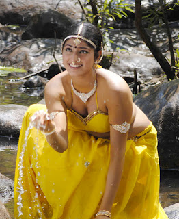 actress hari priya hd hot spicy  boobs n navel pics photos images53