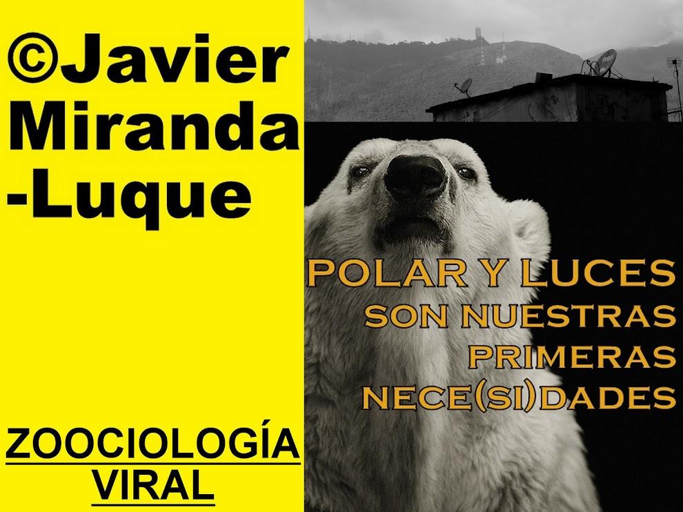 ©Polar y Luces son nuestras primeras nece(si)dades