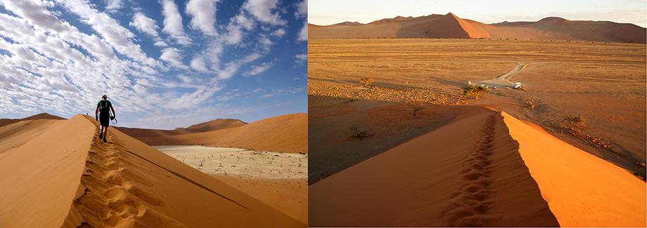 Ynas Reise Blog | Namibia | Auf der Düne 45
