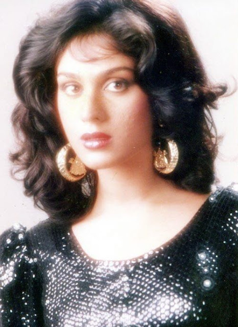 Beautiful Meenakshi Seshadri HD Wallpaper