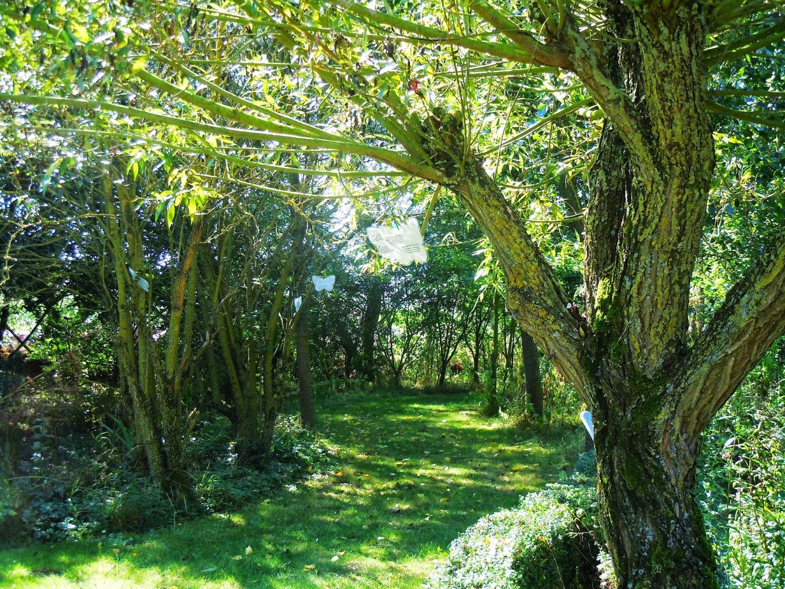 Le pantgat maison d 39 h tes jardin naturel du pantgat for Le jardin naturel