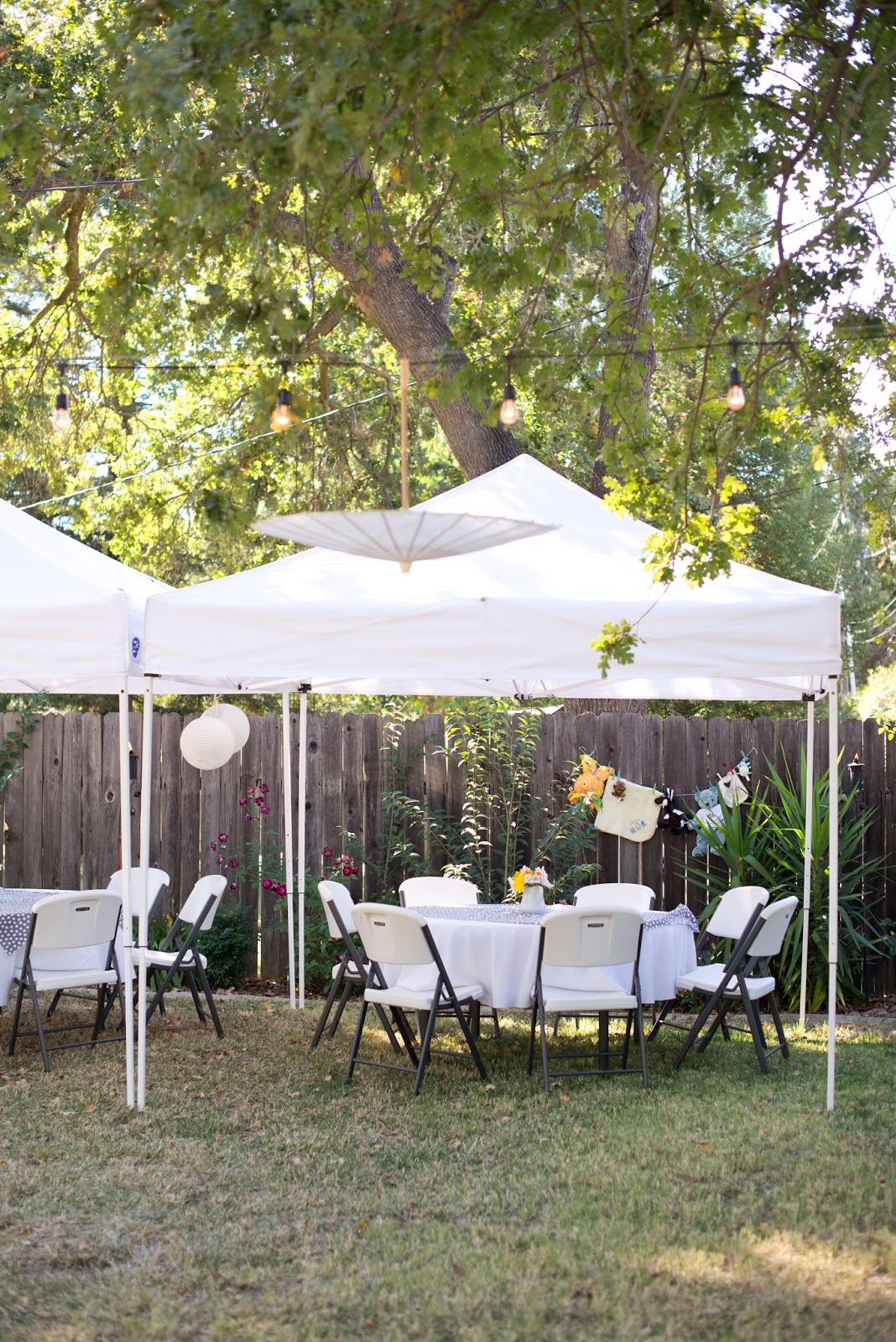 Domestic Fashionista Sophisticated Zoo Animal Backyard Baby Shower