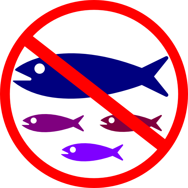 Okanagan Similkameen Stewardship: Save our Salamanders